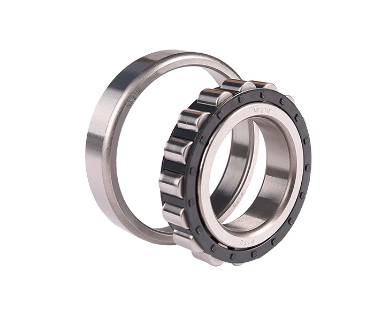Cylindrical Roller Bearing NF-type