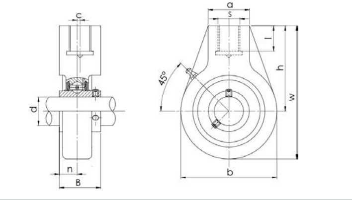 Structure Diagram Of Bearing Unit UCHA